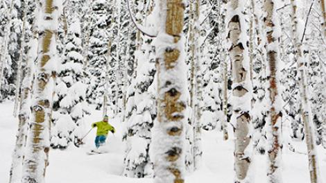 ユタ州でのスキー:ウィンタースポーツの天国