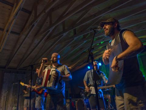 ボイス・オブ・ザ・ウェットランズ・フェスティバルで披露される田舎風の音楽