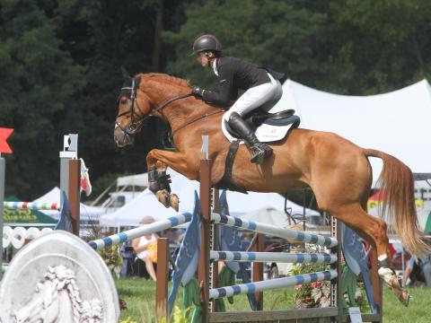 リッチランドパーク馬術競技会でジャンプする馬