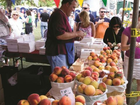 毎年開催されるナイアガラ・カウンティ・ピーチ・フェスティバルで新鮮な桃を売る農家の人