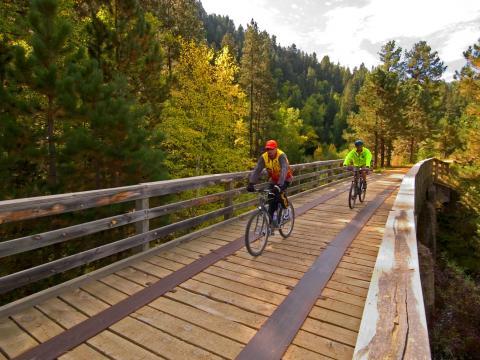 ミケルソン・トレイル・トレックで青々とした森の中に架かる橋を渡るサイクリスト