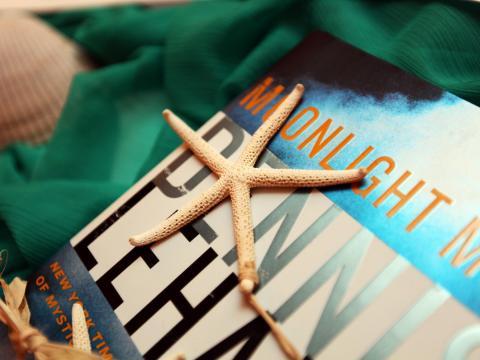 フロリダ州アメリア島の貝殻と本