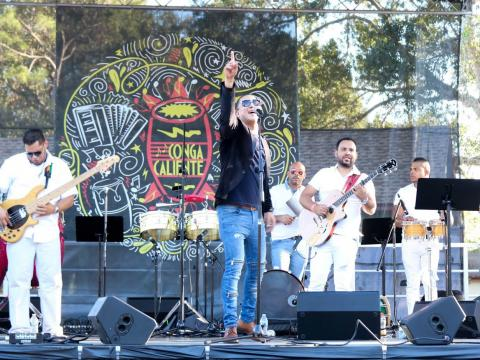 タンパのコンガ・カリエンテ・フェスティバルでのラテン音楽の生演奏