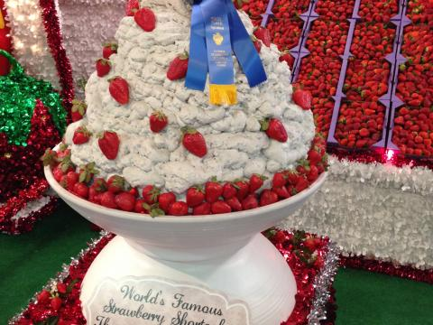 An award-winning strawberry shortcake on display among other strawberry delights at the Florida Strawberry Festival in Plant City