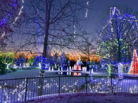 オハイオ州コロンバス動物園と水族館でのワイルドライトの明かり