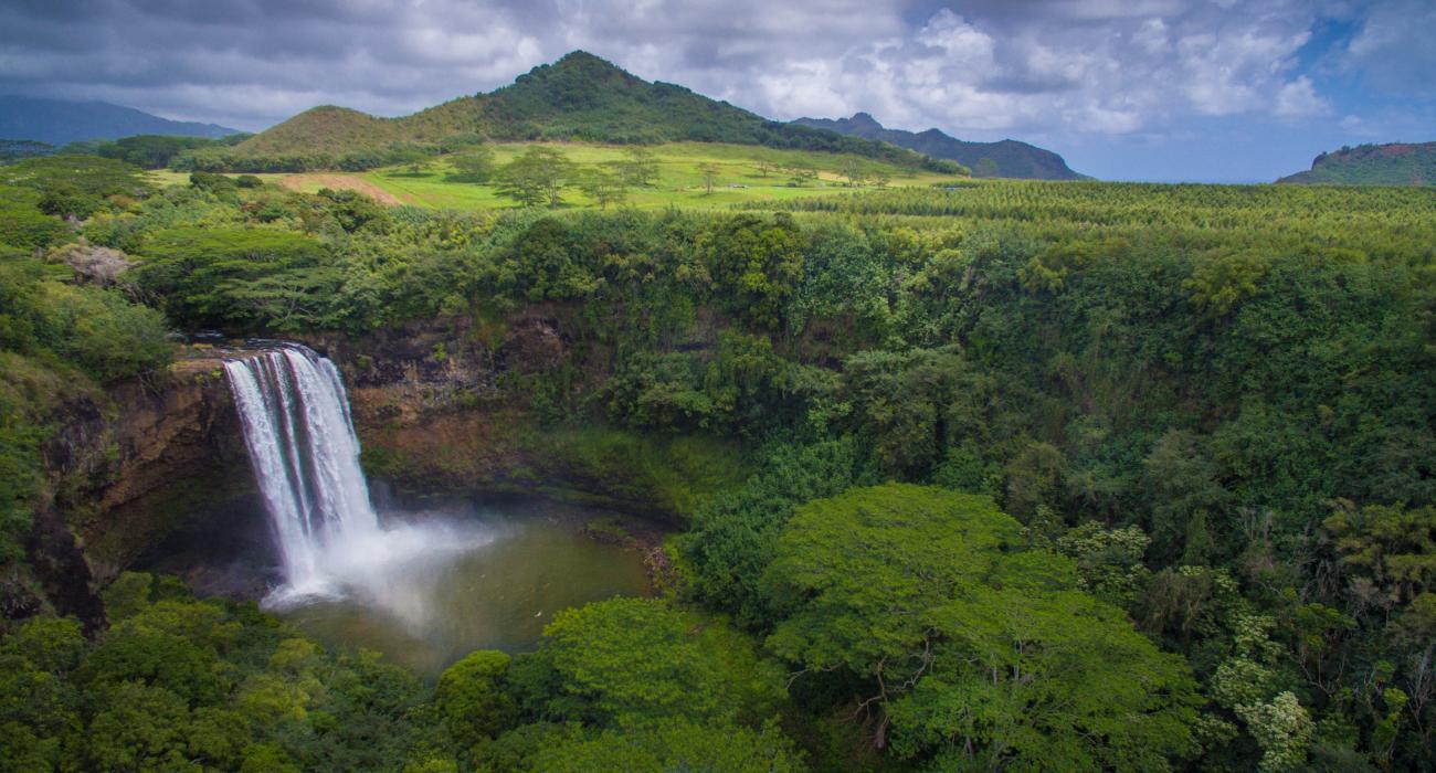 Garden Island Hawaii
